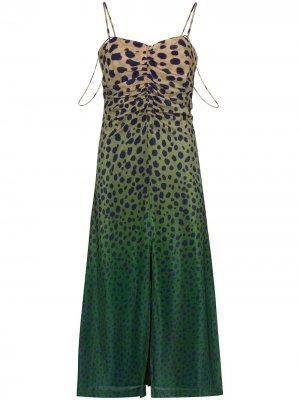 Платье миди с принтом и эффектом омбре House of Holland. Цвет: коричневый