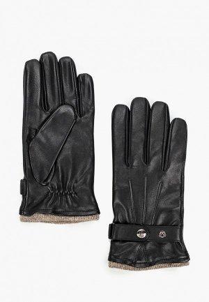 Перчатки Eleganzza 8/22. Цвет: черный