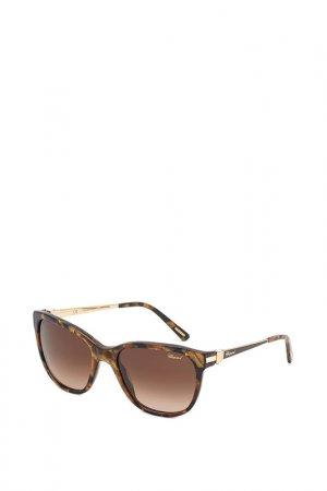 Очки солнцезащитные Chopard. Цвет: черепаховый
