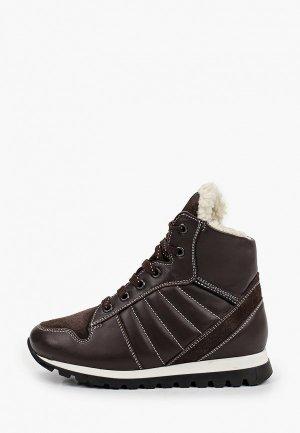 Ботинки Ralf Ringer WALL-D. Цвет: коричневый