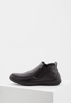 Ботинки Aldo Brue AL232AMCKEO7. Цвет: черный