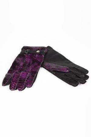 Перчатки Billionaire. Цвет: фиолетовый