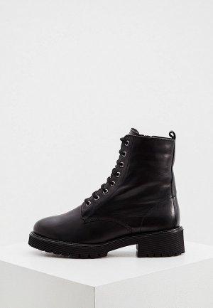 Ботинки Högl CLAY. Цвет: черный