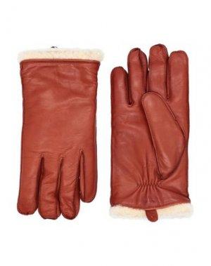 Перчатки ROYAL REPUBLIQ. Цвет: коричневый