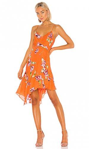 Платье monroe Parker. Цвет: оранжевый