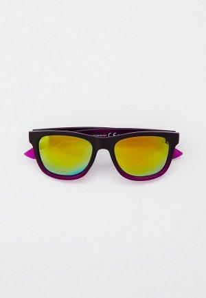 Очки солнцезащитные Eyelevel Glastonbury. Цвет: фиолетовый