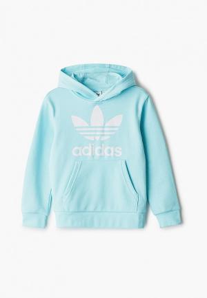 Худи adidas Originals. Цвет: бирюзовый