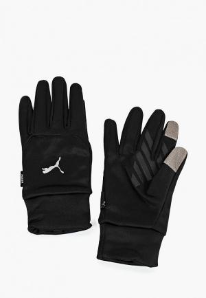 Перчатки PUMA PR Warm Gloves. Цвет: черный