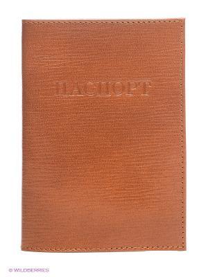 Обложка для паспорта Olci. Цвет: темно-коричневый, светло-коричневый