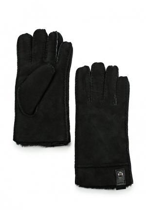 Перчатки UGG Australia. Цвет: черный