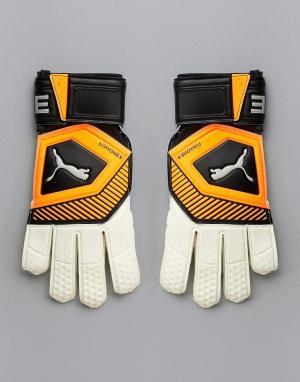 Оранжевые вратарские перчатки Football 041475-01 Puma. Цвет: оранжевый