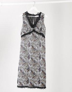 Платье миди с кружевной отделкой и леопардовым принтом -Многоцветный Elvi