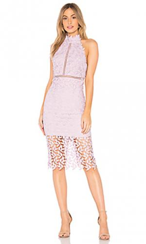 Платье gemma Bardot. Цвет: бледно-лиловый