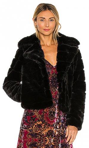 Пальто BLANKNYC. Цвет: черный