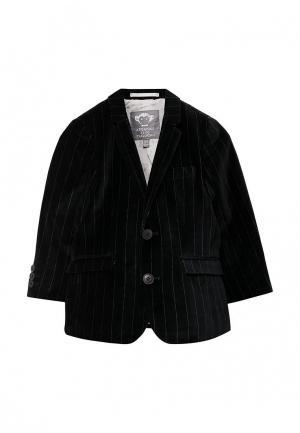 Пиджак Appaman MP002XB001WE. Цвет: черный