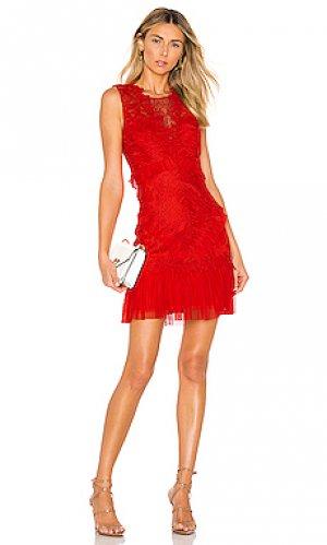 Мини платье francesca Bardot. Цвет: красный