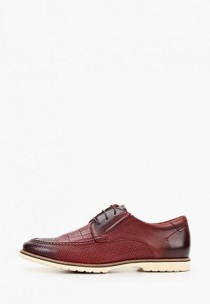 Туфли Franco Bellucci. Цвет: бордовый