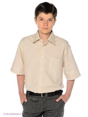 Рубашка Davani. Цвет: кремовый