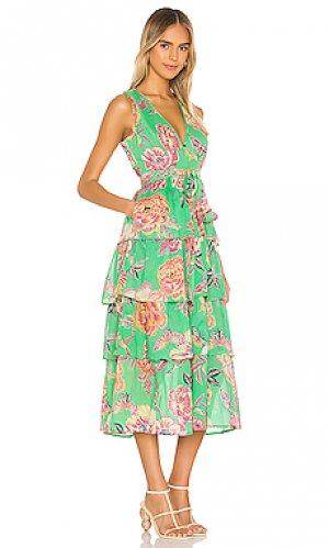 Платье миди eliza Banjanan. Цвет: зеленый