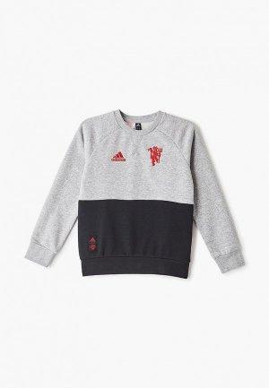 Свитшот adidas MUFC KIDS CRSWT. Цвет: серый