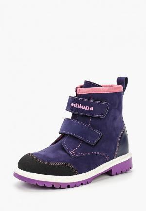 Ботинки Antilopa. Цвет: фиолетовый