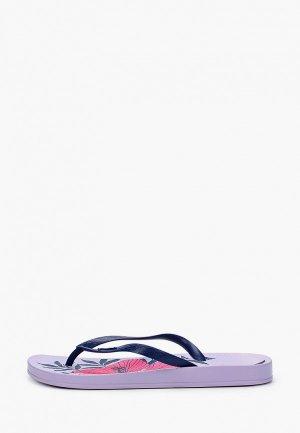 Сланцы Ipanema. Цвет: фиолетовый