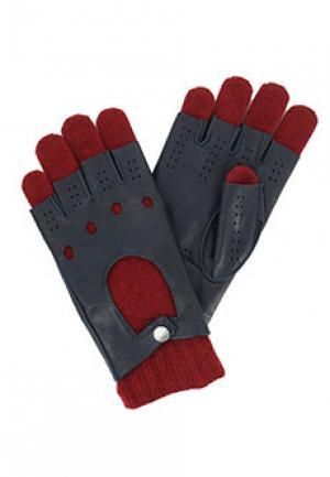 Перчатки HARMONT&BLAINE. Цвет: синий