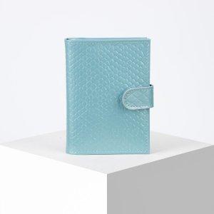 Обложка для автодокументов и паспорта, цвет голубой TEXTURA