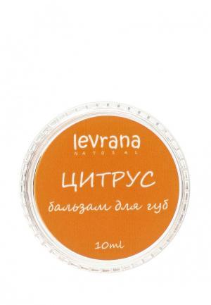 Бальзам для губ Levrana Цитрус, 10 гр
