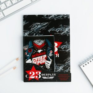 Набор обложка для паспорта и ежедневник ArtFox