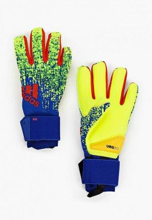 Перчатки вратарские adidas PRED PRO. Цвет: разноцветный