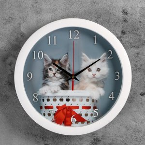 Часы настенные, серия: животный мир, Соломон