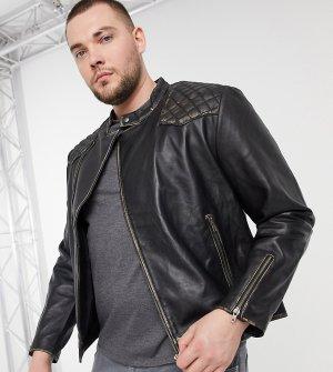 Кожаная байкерская куртка PLUS-Черный цвет Bolongaro Trevor