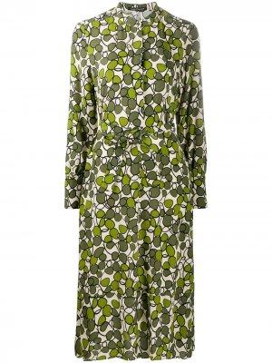 Платье-рубашка с графичным принтом Luisa Cerano. Цвет: зеленый