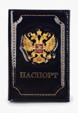 Обложка для паспорта Forte St.Petersburg. Цвет: синий