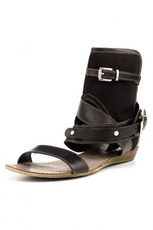 Туфли Cinti. Цвет: коричневый