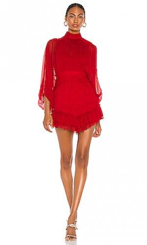 Мини платье clemence Shona Joy. Цвет: красный
