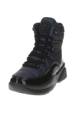 Ботинки Jog Dog. Цвет: синий латекс
