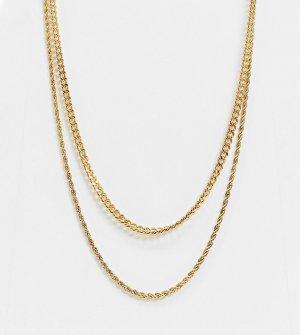 Набор из двух ожерелий цепочек толщиной 4 мм с покрытием 14-каратного золота -Золотистый ASOS DESIGN
