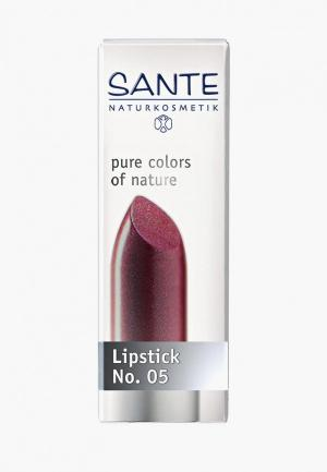 Помада Sante Розовый тюльпан № 05. Цвет: бордовый