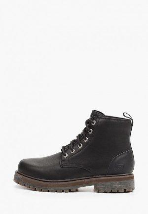 Ботинки Skechers ALLEY CATS. Цвет: черный