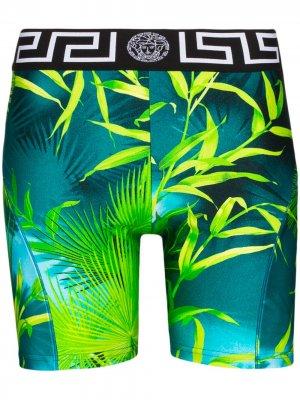 Облегающие шорты с принтом Jungle Versace. Цвет: зеленый
