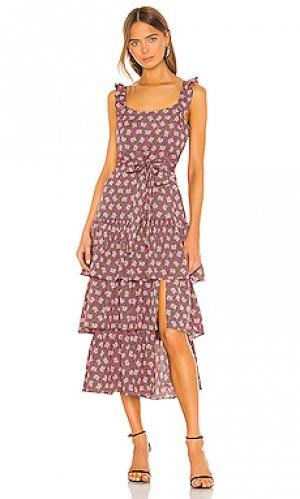 Платье миди charlotte LIKELY. Цвет: розовый