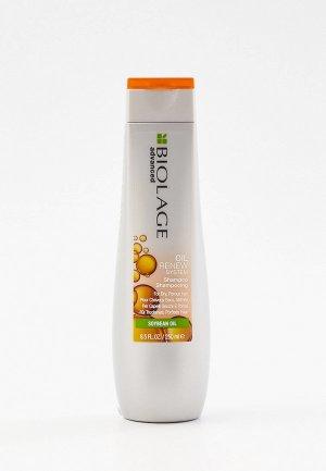 Шампунь Matrix Biolage Oil Renew для восстановления волос, 250 мл. Цвет: прозрачный