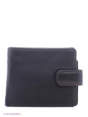 Бумажник HT9 Visconti. Цвет: коричневый