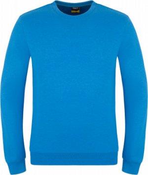 Свитшот мужской , размер 44 Demix. Цвет: синий