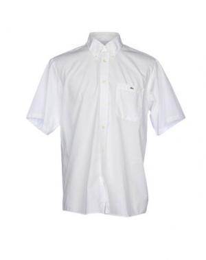 Pубашка LACOSTE. Цвет: белый