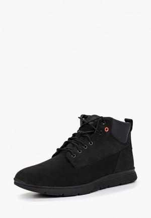 Ботинки Timberland KILLINGTON CHUKKA BLACK. Цвет: черный