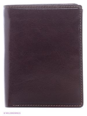 Бумажник MZ-3 Visconti. Цвет: коричневый
