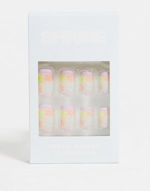 Накладные ногти – Pastel Daisy (Маргаритки в пастельных оттенках)-Multi Shrine